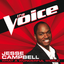 What A Wonderful World (The Voice Performance)/Jesse Campbell
