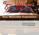 GIN BLOSSOMS/NEW MIS/Gin Blossoms