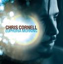 Euphoria Morning/Chris Cornell