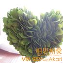 相思相愛 -heart warm remix-/VIN SEV with Akari