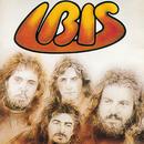 Ibis/Ibis