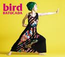 BATUCADA -バトゥカーダ-/bird