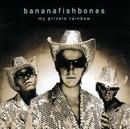 My Private Rainbow/Bananafishbones