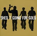 SHED SEVEN/Shed Seven
