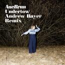 Undertow (Andrew Bayer Remix)/Ane Brun