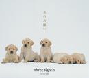 犬のおねがい/three tight b