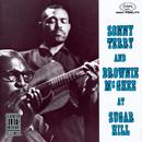S.TERRY/B.MCGHEE/SUG/Sonny Terry, Brownie McGhee