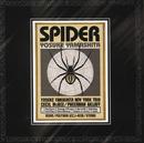 Spider/Yosuke Yamashita