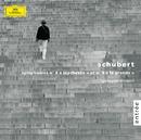 Schubert: Symphonies N° 8 et 9/Staatskapelle Dresden, Giuseppe Sinopoli