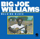 BIG JOE WILLIAMS/WAL/Big Joe Williams