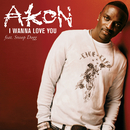 I Wanna Love You (Intl 2 Track) (feat. Snoop Dogg)/Akon