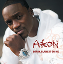 Sorry, Blame It On Me (Int'l 2Trk)/Akon