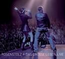 Das grosse Leben - Live/Rosenstolz