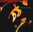 プレンダ・ミーニャ/Caetano Veloso