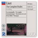 Liszt: The Complete Etudes (2 CDs)/Claudio Arrau, Nikita Magaloff