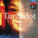 Puccini: Turandot/Inge Borkh, Renata Tebaldi, Mario del Monaco, Coro dell'Accademia Nazionale Di Santa Cecilia, Orchestra dell'Accademia Nazionale di Santa Cecilia, Alberto Erede