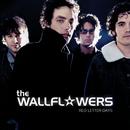 WALLFLOWERS/RED LETT/The Wallflowers
