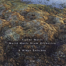 A Wider Embrace/Trevor Watts, Moiré Music Drum Orchestra