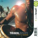 Tribal Bahia/Timbalada