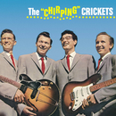 The Chriping Crickets/Buddy Holly