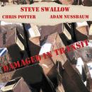 Damaged In Transit/Steve Swallow, Chris Potter, Adam Nussbaum