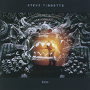 S.TIBBETTS/THE FALL/Steve Tibbetts