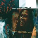 ドリーム・オブ・フリーダム/Bob Marley