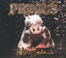 Pork Soda/Primus