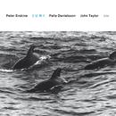 PETER ERSKINE/Peter Erskine, Palle Danielsson, John Taylor