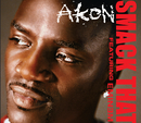 Smack That (Intl MaxiEnhanced) (feat. Eminem)/Akon