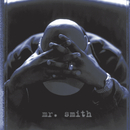 Mr. Smith/LL Cool J