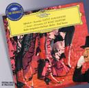 オッフェンバック:パリの喜び、他/Paul Strauss, Radio-Symphonie-Orchester Berlin