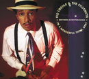 I'm A Wonderful Thing, Baby (Brothers in Rhythm Remix)/Kid Creole & The Coconuts