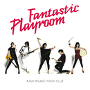 Fantastic Playroom/New Young Pony Club