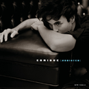 Addicted (International Version)/Enrique Iglesias