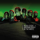 In The Mode (CD Int version)/Roni Size, Reprazent