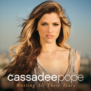 Wasting All These Tears/Cassadee Pope