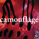 Meanwhile/Camouflage
