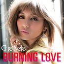 Burning Love/Che'Nelle