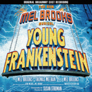 The New Mel Brooks Musical - Young Frankenstein/Mel Brooks