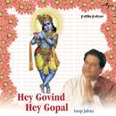 Hey Govind Hey Gopal/Anup Jalota