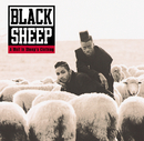 A Wolf In Sheep's Clothing/Black Sheep