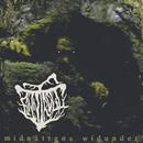 Midnattens Widunder/Finntroll