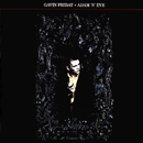Adam 'N' Eve/Gavin Friday