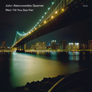 Wait Till You See Her/John Abercrombie Quartet