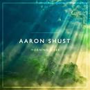 Morning Rises/Aaron Shust