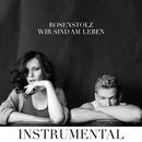 Wir sind am Leben (Instrumental Version)/Rosenstolz