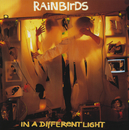 In A Different Light/Rainbirds