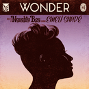 Wonder (feat. Emeli Sandé)/Naughty Boy