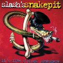 It's Five O'Clock Somewhere/Slash's Snakepit
